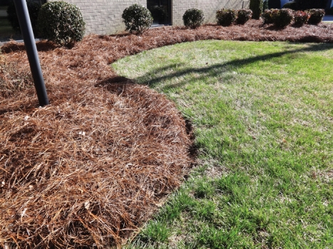 Get Out There And Spread Some Mulch Salisbury Post Salisbury Post